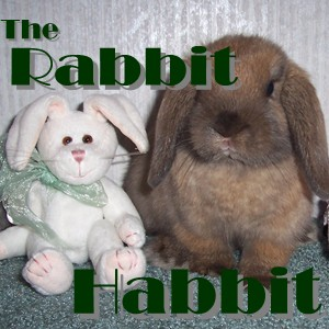 The Rabbit Habbit